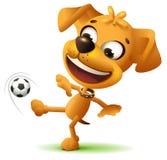 O jogador de futebol engraçado amarelo do cão retrocede a bola de futebol Fotos de Stock