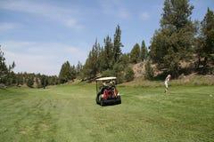 O jogador de golfe da senhora bate a esfera Imagem de Stock Royalty Free