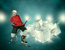 O jogador de hóquei em gelo comemora o objetivo marcado foto de stock
