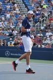 O jogador de tênis profissional John Isner do Estados Unidos comemora a vitória após o segundo fósforo do círculo no US Open 2015 Imagem de Stock