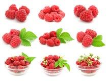 O jogo da framboesa vermelha frutifica com folhas verdes Foto de Stock