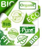 O jogo de etiquetas orgânicas e bio, fitas, carimba a Foto de Stock