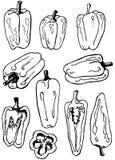 O jogo de várias pimentas doodle, algumas delas cortou Foto de Stock Royalty Free