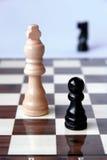 O jogo de xadrez vem terminar Fotografia de Stock