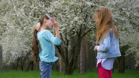 O jogo marrom louro de divertimento do cabelo de duas amigas da escola que penteia seu cabelo longo vangloria-se entre si Conceit vídeos de arquivo