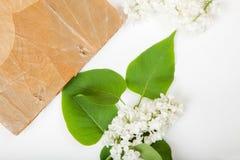 O Jotter na superfície de um lilás do branco floresce foto de stock royalty free