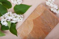 O Jotter na superfície de um lilás do branco floresce foto de stock