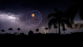 4o julho Photobomb Fotografia de Stock