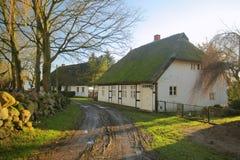 O junco histórico telhou casas em torno da igreja em Bisdorf bruto, Alemanha fotografia de stock royalty free