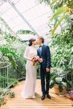 O justos casados estão beijando no jardim botânico bonito Vista completo Imagens de Stock