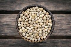 O kampot orgânico secou grãos da pimenta branca em cambodia foto de stock