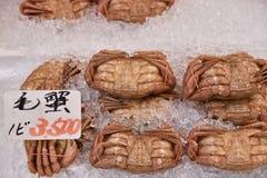 O KE-gani (caranguejo da crina) refrigera no gelo para a venda no mornin de Hakodate Foto de Stock Royalty Free