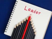 O líder 14 Imagem de Stock