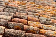 O líquene cobriu telhas de telhado espanholas da terracota Foto de Stock Royalty Free