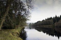 O laço do rio Fotografia de Stock