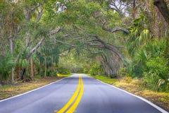 O laço, praia de Ormond, Florida imagem de stock