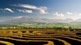 O labirinto Imagem de Stock Royalty Free
