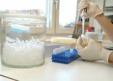 O laboratório biológico imagem de stock royalty free