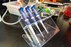 O laboratório introduz com pipeta arranjado no banco de laboratório Foto de Stock