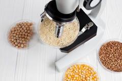 O laboratório para cereais da análise de alimento testa ninguém fundo de madeira Imagens de Stock