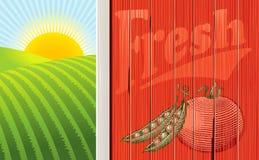 O lado de um celeiro com nascer do sol além. Imagens de Stock Royalty Free