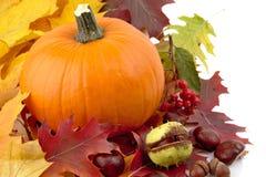 O lado esquerdo disparou da abóbora com as folhas de outono para o dia da ação de graças no branco Fotos de Stock Royalty Free