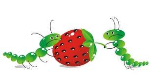 O lagarta-mum e a lagarta-criança Fotos de Stock Royalty Free