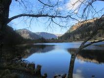 O lago Imagens de Stock