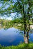 O lago Imagem de Stock