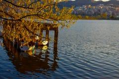 o lago artificial de tirana durante a hora dourada imagem de stock royalty free