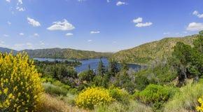 O lago bonito Silverwood Fotografia de Stock Royalty Free