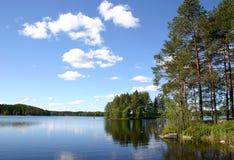O lago da floresta cercado com pinhos Fotos de Stock Royalty Free