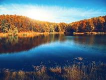 O Lago das Cisnes atrás do parque ecológico de Feldman, Kharkov, Ucrânia Fotos de Stock Royalty Free