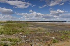 O lago de sal no Gobi Foto de Stock