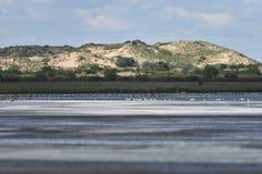 O lago de sal no Gobi Imagem de Stock