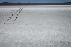 O lago de sal secado Fotografia de Stock Royalty Free