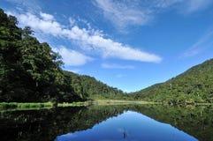O lago duck de mandarino Imagem de Stock Royalty Free