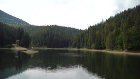 O lago e a floresta da alta altitude de Synevir são refletidos na água calma no dia de verão vídeo 4K video estoque