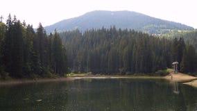 O lago e a floresta da alta altitude de Synevir são refletidos na água calma no dia de verão vídeo 4K vídeos de arquivo