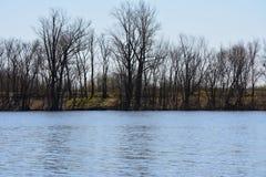 O lago em maio Fotos de Stock