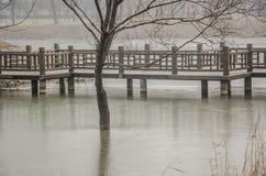 O lago ice, a ponte de madeira e a árvore Fotografia de Stock Royalty Free
