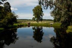 O lago misterioso Imagem de Stock