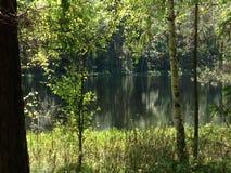O lago misterioso foto de stock