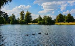 O lago na casa de Petworth Imagens de Stock Royalty Free