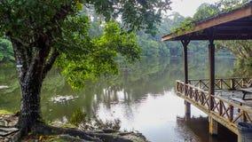 O lago no centro da descoberta da floresta úmida em Sepilok, Bornéu fotografia de stock