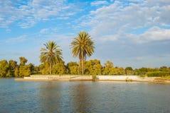 O lago no parque Imagens de Stock Royalty Free