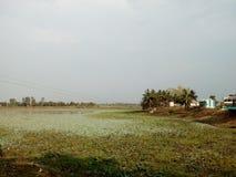 O lago pelo lado de uma vila Foto de Stock