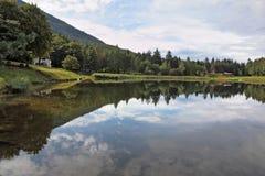 O lago pequeno Fotografia de Stock
