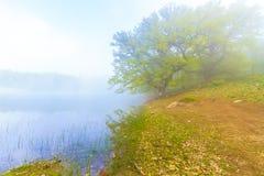 O lago preto Foto de Stock
