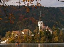 O lago sangrou a igreja da ilha em cores do outono Fotos de Stock Royalty Free
